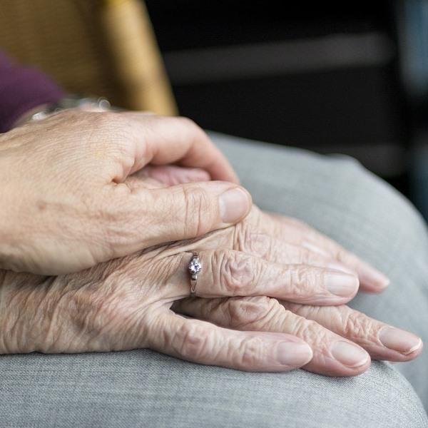 เฝ้าไข้-elderly