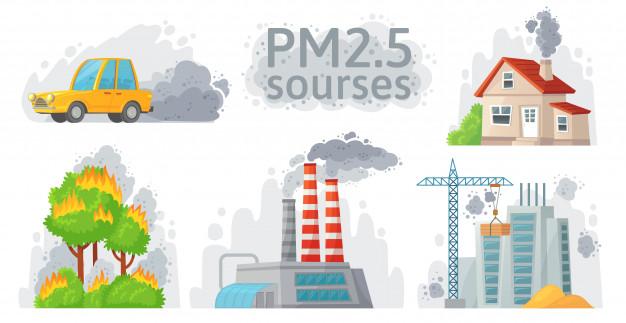 air-pollution-pm-2.5-cause-eldary